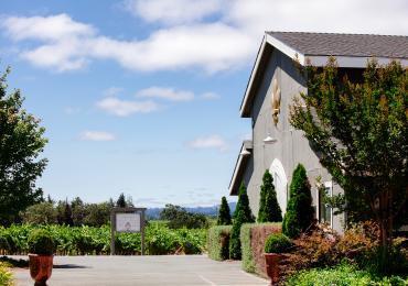 DeLoach Vineyards in Santa Rosa