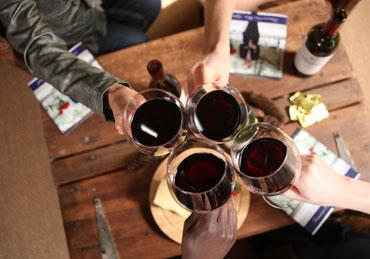 Wine Society Induldge