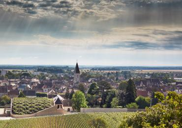 Jean-Claude Boisset Winery in Nuits-Saint-Georges