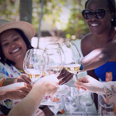 People clinking wine glasses in Napa Valley