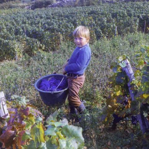 Jean-Charles Boisset Growing Up